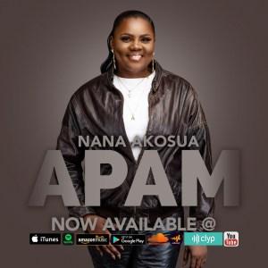 Apam by Nana Akosua