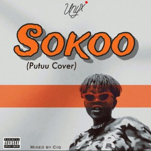 Sokoo (Putuu Cover) by Unyx