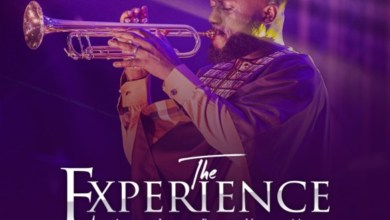 Photo of Album: The Experience by MOGmusic