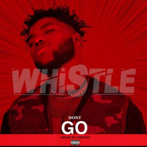 Don't Go by Kwaami Whistle