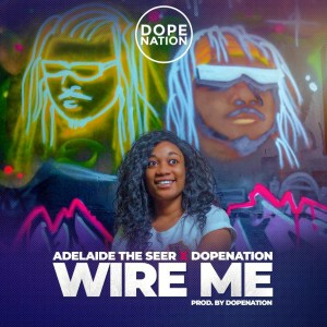 Wire Me by Adelaide The Seer & DopeNation