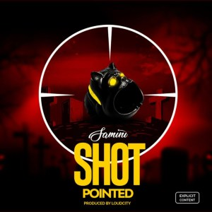 Shot Pointed by Samini