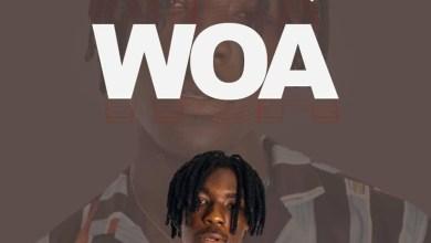 Woa by Heartman feat. IceBoy