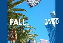 Davido - Fall (Prod. by Kiddominant) (GhanaNdwom.com)