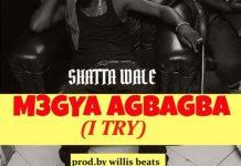 Shatta Wale - Megya Agbaagba (I Try)
