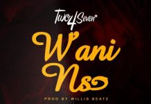 Two4Seven - Wani Nso artwork