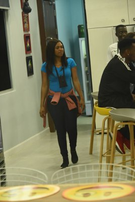 Big Brother Naija experience