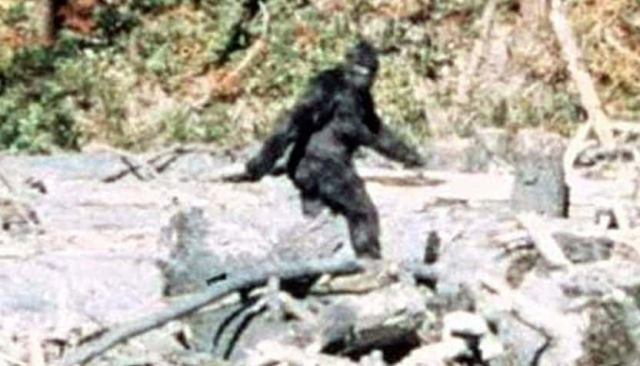 A Look at Ape-Like Cryptids by Region