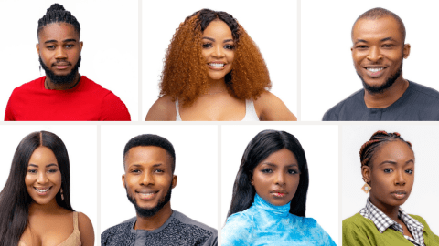 Meet All 20 Housemates For 2020 Big Brother Najia
