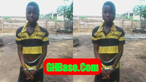 A JHS student ends mother's life over his missing phone