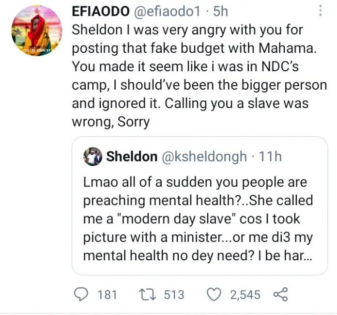 Efia Odo Back On Twitter And Starts Beef With Kwadwo Sheldon 1