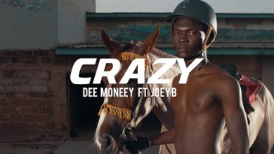 Photo of Dee Moneey ft Joey B – Crazy [Official Video]