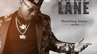 Photo of Flowking Stone – In My Lane