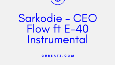 Photo of Sarkodie – CEO Flow ft E-40 Instrumental