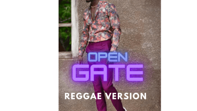 Photo of Kuami Eugene – Open Gate (Reggae Version)