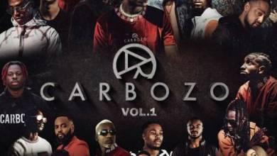 Photo of Carbozo – Carbozo Vol. 1 Zip Download [2020 Zippyshare + 320kbps]