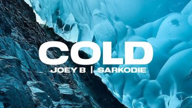 Photo of Joey B – Cold Instrumental  Ft Sarkodie (Prod. by DJ Krept)