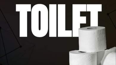 Photo of Shatta Wale – Toilet