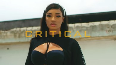 Photo of Stonebwoy – Critical ft. Zlatan (Official Video)