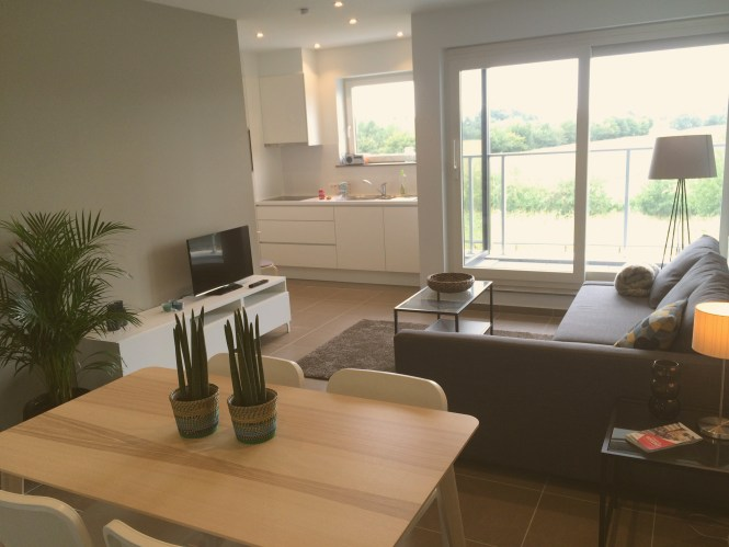 Furnished 2 Person Apartment In Ghent Belgium To For Short Or Longer Term