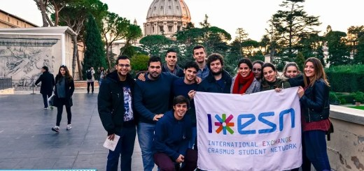 Un gruppo di ragazzi Erasmus durante l'evento 2016 organizzato da ESN Italia.