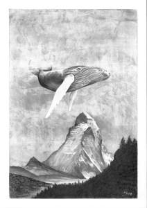 Montagne Balene Alberto Graia