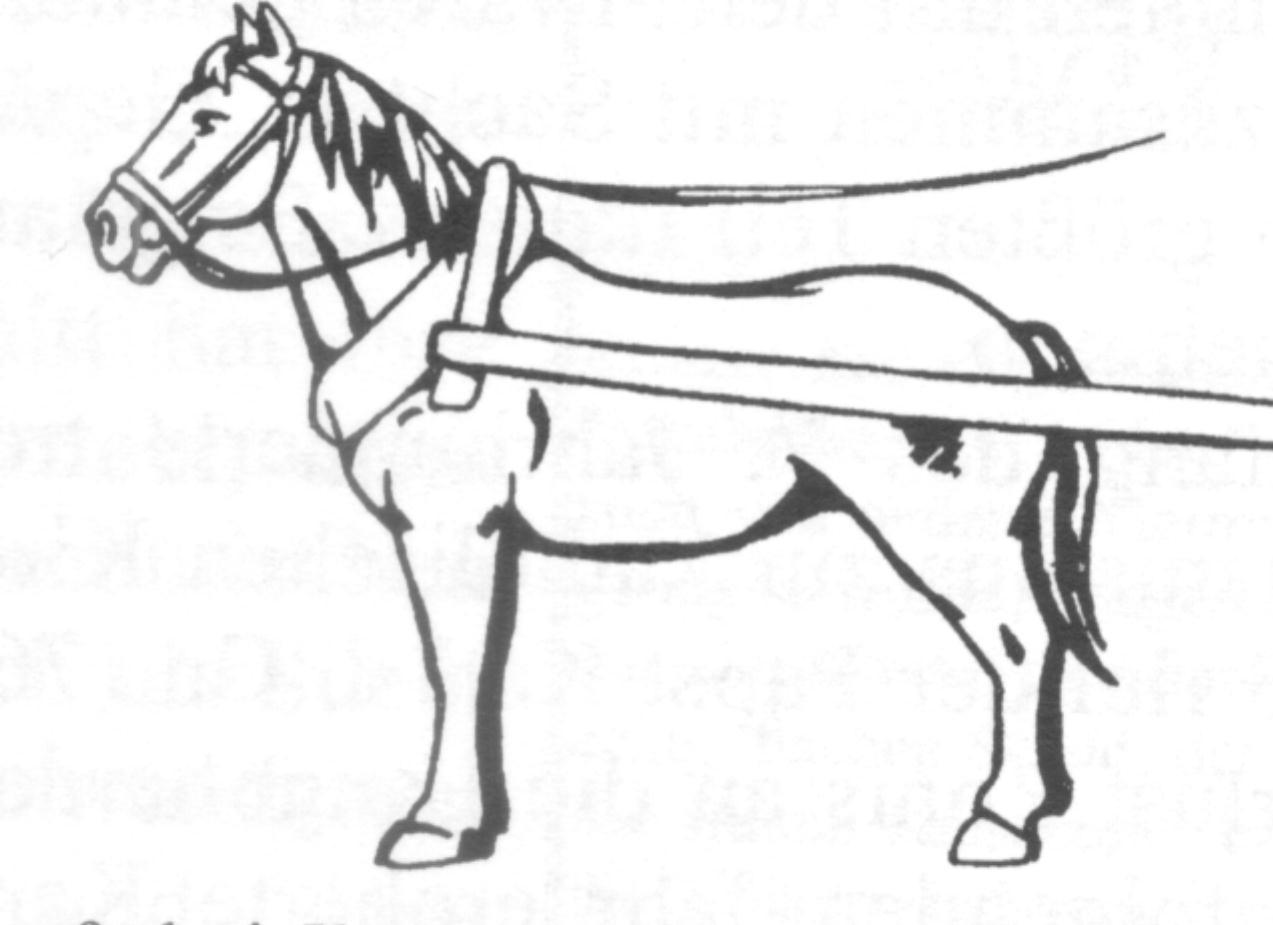 Kampf Um Rom Historical Glossary Bertold01c