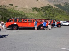 Classic tour busses in the Glacier NP visitor center parking lot.