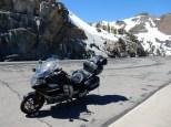 The Nightowl at Carson Pass.