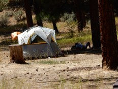 Afternoon siesta time at the Hot Springs campground in the Boise National Forest.