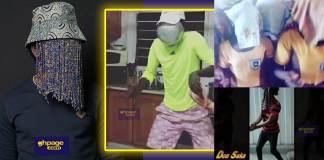 """Anas dance"" craze hits social media"