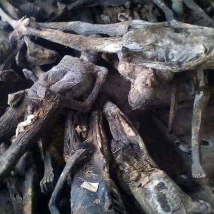 Police raid Togolese juju man's house and find over 5000 dead bodies and skeletons