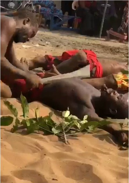 men cutting themselves without bleeding
