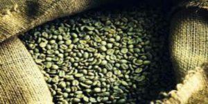 طريقه القهوة الخضراء للتنحيف