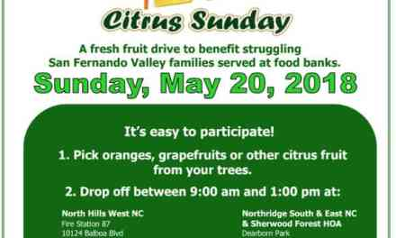 Citrus Sunday, May 20