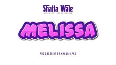 Photo of Instrumental: Shatta Wale – Melissa