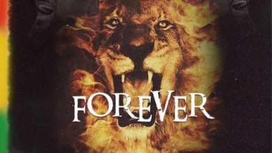 Photo of Samini – Forever (Prod. by Brainy Beatz)