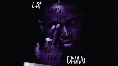 Photo of Omah Lay – Damn (Cricket Remix)