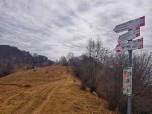 Giro ad Anello Monte di Nese