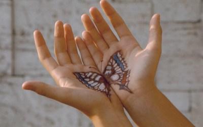 la storia della farfalla