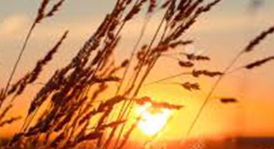 Il vento e il sole – Esopo