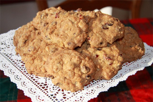 Dried-Cranberry-and-Chocolate-Cookies-dough-done-8x6.JPG