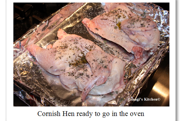 Cornish-hen-before.-copyJPG-8x6.PNG