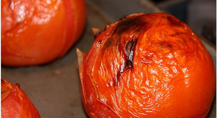 roasted tomatoes copy