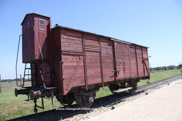 transportaion train