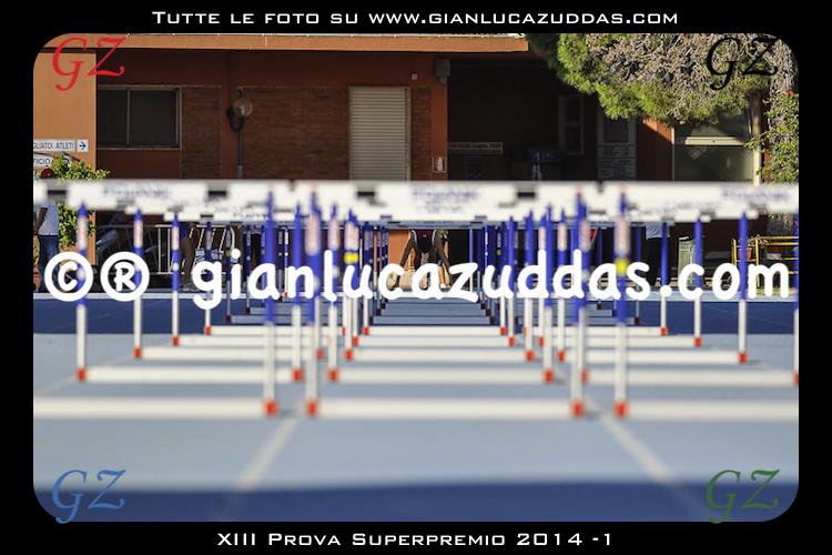 XIII Prova Superpremio 2014 -1