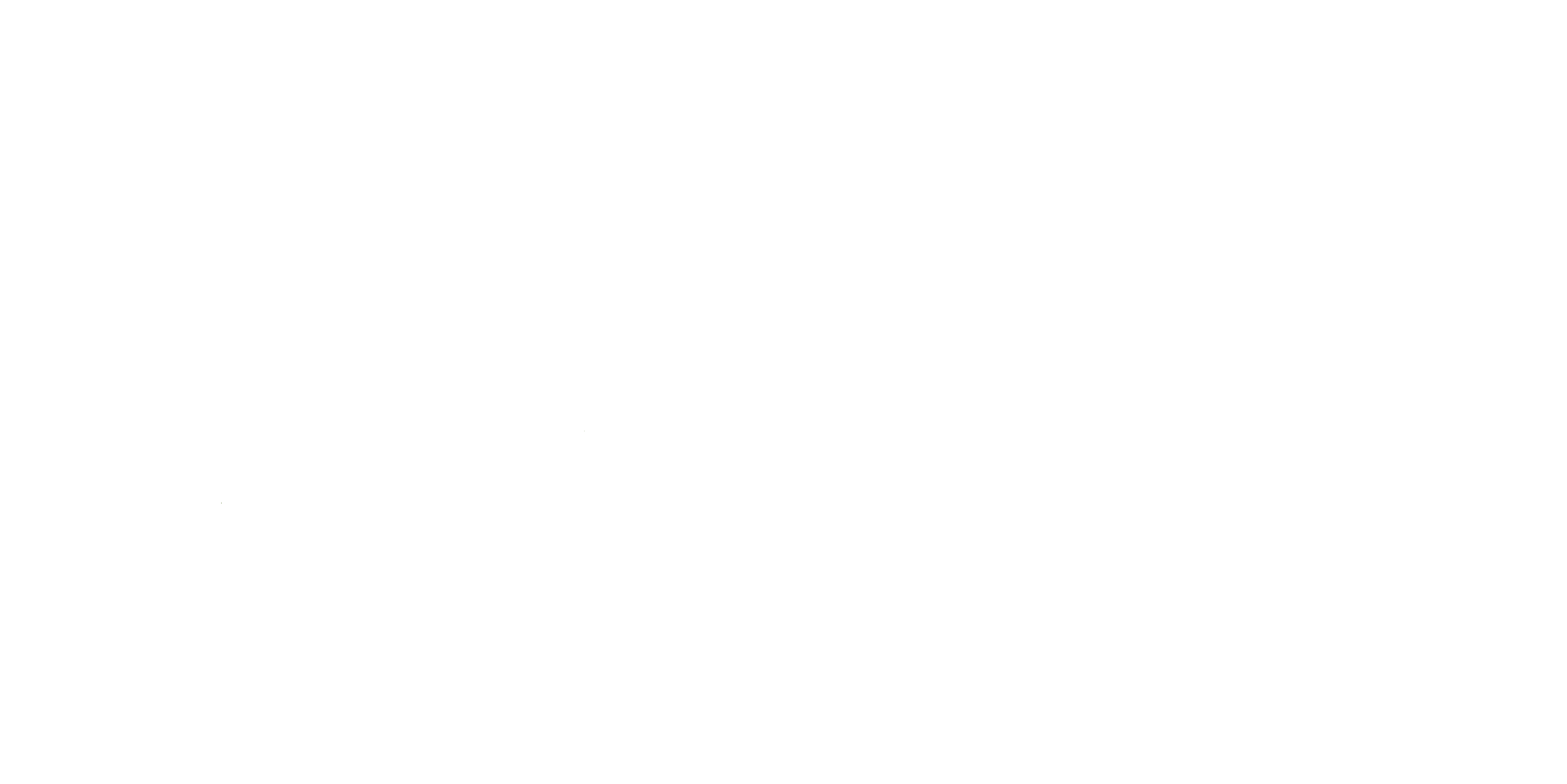 FJS Distributors, Inc.