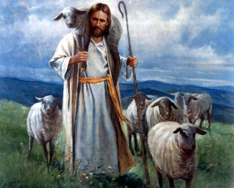 Image result for good shepherd pictures