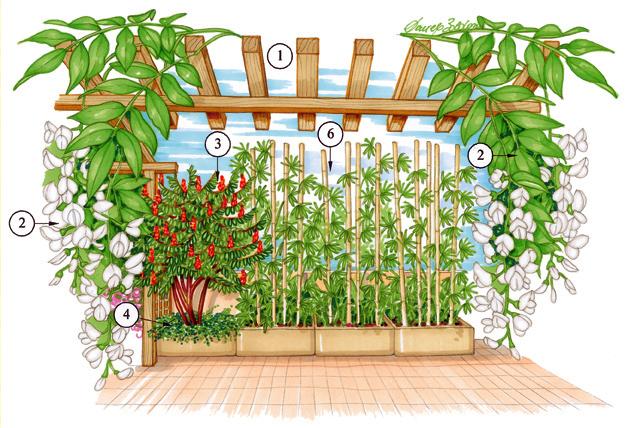 Crea e progetta il tuo giardino in 12 punti windows live for Giardino in terrazza
