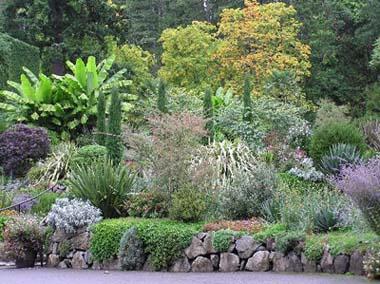 Il giardino mediterraneo le caratteristiche - Giardini mediterranei ...